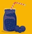 Blueberry design vector image