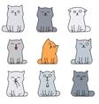 Nine cute kittens vector image