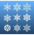 snowflakes set nine design element vector image