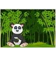 Cartoon panda in the jungle bamboo vector image vector image