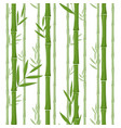green bamboo seamless pattern background vector image vector image