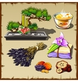 Set of garden stones spices and herbs vector image vector image