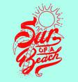Sun a beach