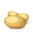 three cartoon potato tasty and healthy food vector image