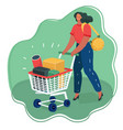 woman pushing shopping cart full boxes vector image vector image