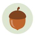 acorn icon flat vector image vector image