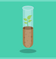 biotechnology laboratory glassware with soil and vector image