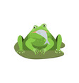 cartoon cute green frog character with fish vector image vector image