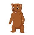 cartoon happy brown bear standing vector image vector image