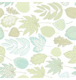 leaves of different trees vector image vector image