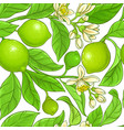 lime branches pattern on white background vector image vector image
