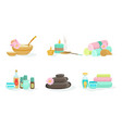 set tools for spa treatments vector image vector image