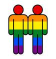 two man lgbt movement rainbow flag vector image
