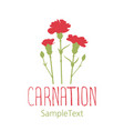 carnation flowers logo design text hand drawn vector image vector image