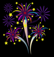 Colorful Firework with stars vector image vector image