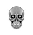 graphic print of stylized skull on white vector image vector image