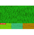green and savanna grass seamless pattern vector image