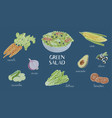 hand drawn green salad ingredients bowl of salad vector image