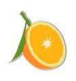 orange fruit sticker concept vector image vector image