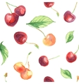 seamless pattern with cherries and leaves vector image