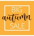 Autumn sale hand written inscription vector image vector image