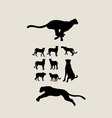 cheetah set silhouettes vector image