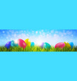 colorful easter eggs on green grass over blue vector image