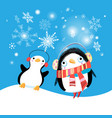 new year bright card with funny penguins vector image vector image
