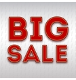 Poster with the inscription Big sale vector image