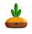timer or time measuring tool turnip vegetable vector image