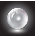transparent sphere on a black background vector image
