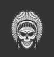 vintage native american indian skull vector image