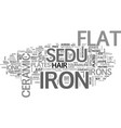 what makes the sedu flat iron so special text vector image vector image