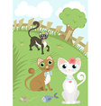 Beautiful cat and her admirers vector image