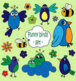a set of of funny birds with flowers vector image