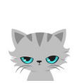 angry cat cartoon cute grumpy cat vector image vector image