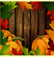 autumn leaves frame and pumpkins on wooden texture vector image