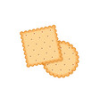biscuit cookie cartoon vector image
