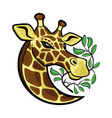 giraffe with tree branches vector image vector image