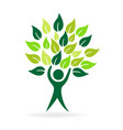 healthy tree nature leaf man icon vector image vector image