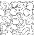 plum branches pattern on white background vector image vector image
