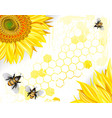 Sunflowers and Bees on a Crisp White Background vector image vector image
