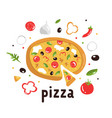 tasty pizza with delicious ingredients colorful vector image