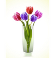 tulips in a glass vase vector image vector image