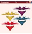 bra and panties vector image