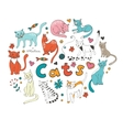 Cute hand drawn cats colorful set arranged in vector image vector image