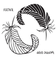 Hand drawn silhouettes of feathers in black and vector image vector image