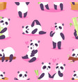 panda bearcat or chinese bear with bamboo vector image vector image