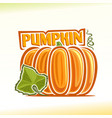 pumpkin still life vector image vector image