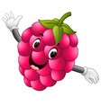 raspberry with face vector image vector image
